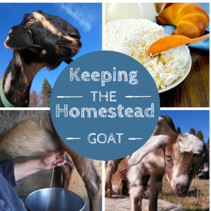 Keeping the Homestead Goat