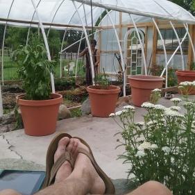 Planting & Resting